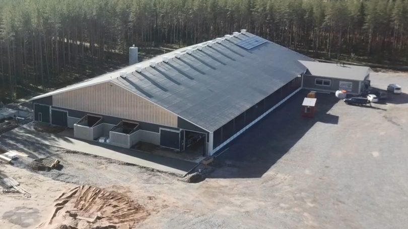 SnellTV on the road: Sandbäddarna vid Ahlviks gård i Ytteresse 2